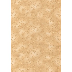 Folio (7755/31)