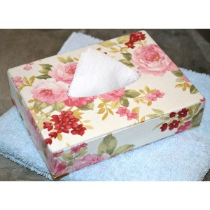 Porta-lenço de papel (1 aula)