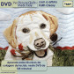 Pet Picture Quilts Made Easy (685789) DVD.