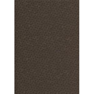 Sandhill Plums (9352-24)